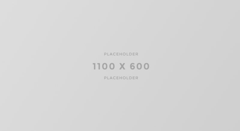 1100×600-light